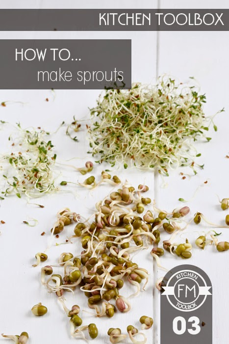 Fresh sprouts on a white wooden background