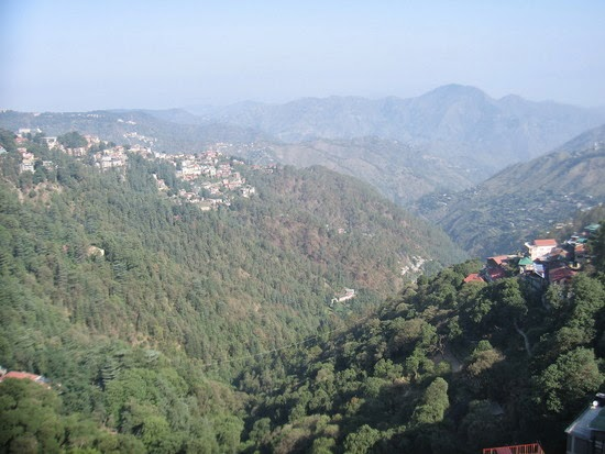Shimla Natural Beauty