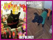 nuestras mascotas del blog:)