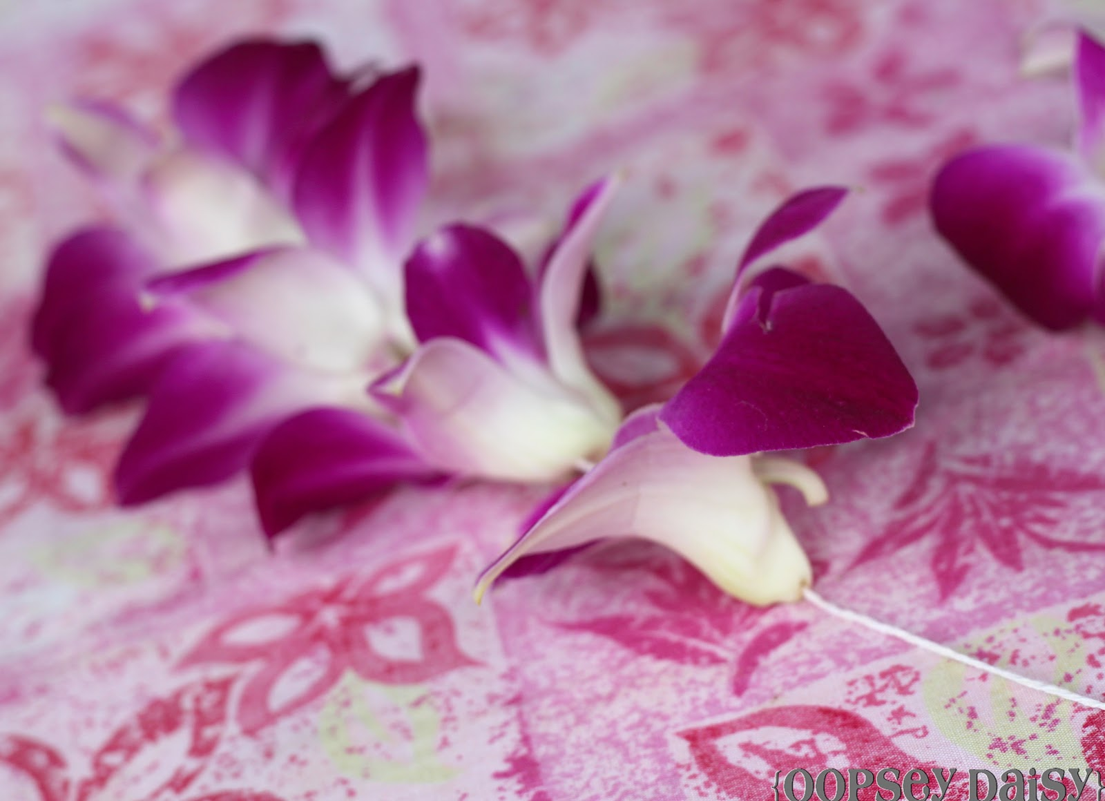 Fresh orchid lei oopsey daisy push down past the needle and onto the twine repeat with other flowers making it as tight or as loose as you wish izmirmasajfo