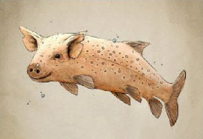Genetically modified organism GMO pig fish