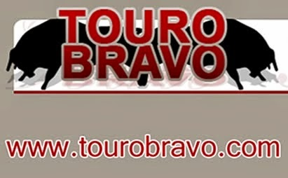 Touro Bravo