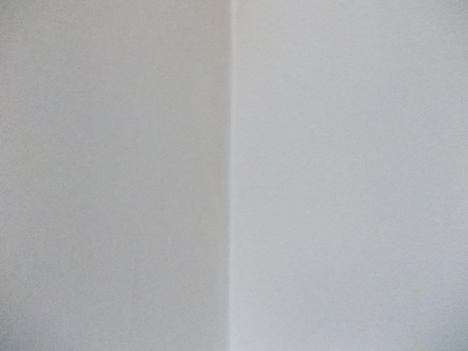 Marcella testet: AURO Plantodecor Premium-Wandfarbe im Test!