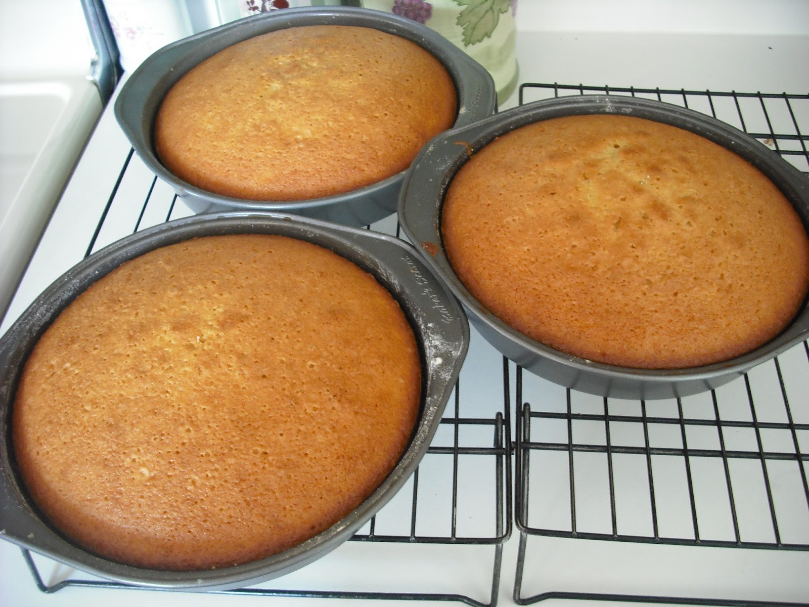 2 Tablespoons Vanilla Extract 1 Cup Sour Cream Or Yogurt Low Fat Works At Room Temperature 3 Cups Cake And Pastry Flour Sifted 3 4 Teaspoon Salt