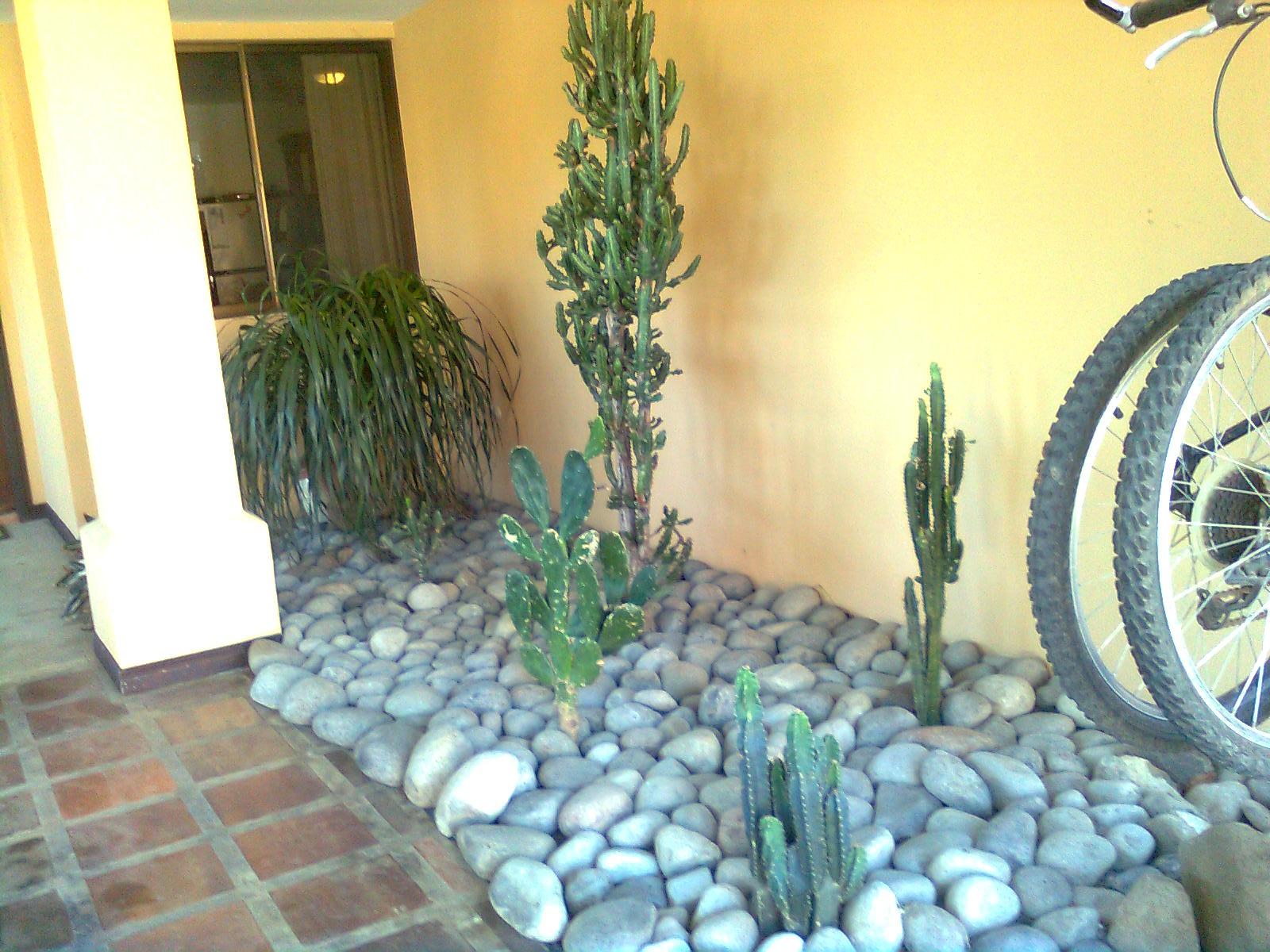 Mantenimiento y dise o de jardines decoraci n entrada - Jardines con poco mantenimiento ...
