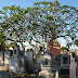Defunciones en Mérida, Yucatán - 26 de diciembre de 2013