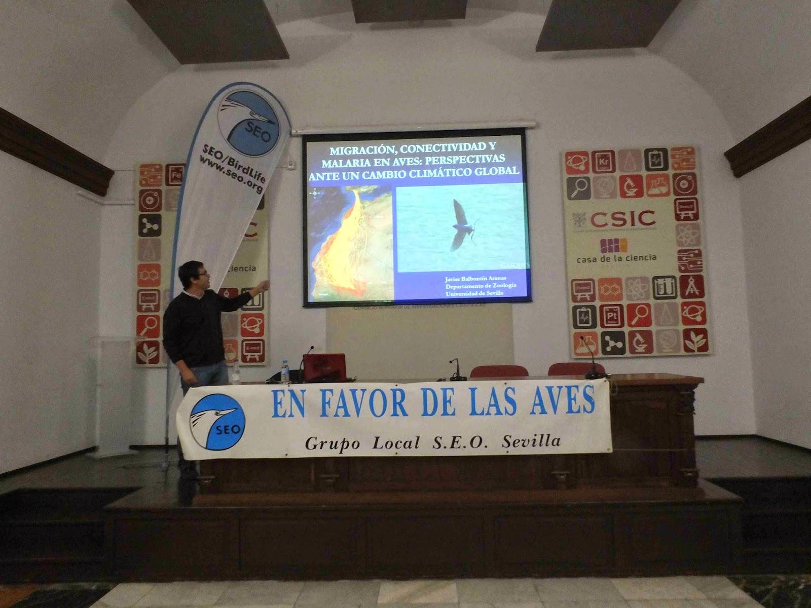 """Conferencia """"Migración, conectividad y malaria en aves"""". Por Javier Balbontín Arenas, en el ciclo Martes Ornitológicos que el Grupo Local SEO-Sevilla organiza en el museo Casa de la Ciencia de Sevilla"""