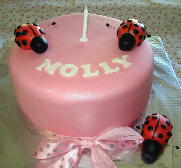 Delanas Cakes Lady Bug 1st Birthday Cake