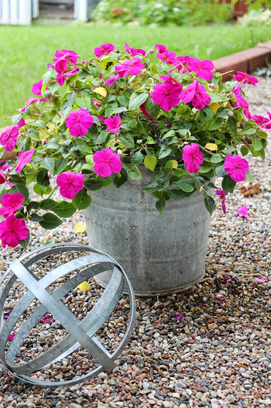 Happy At Home Container Gardening In Galvanized Buckets
