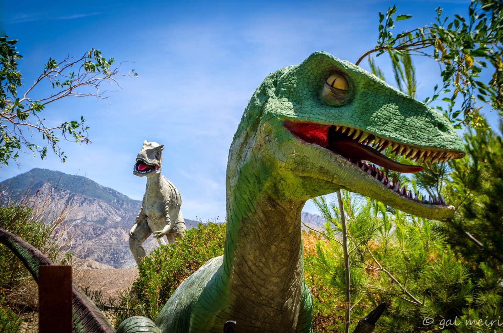 Cabazon Dinosaurs Green Thumb