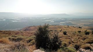 Fields of Umm Qais