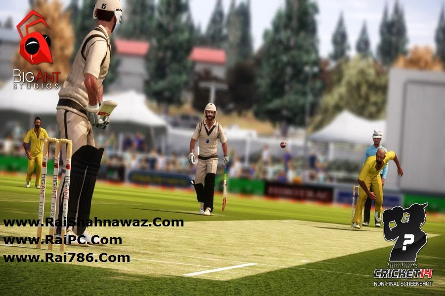 how to play cricket by don bradman