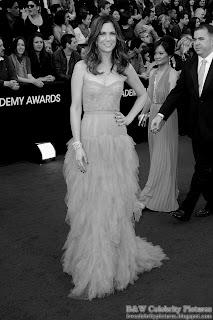 Kristen Wiig over red carpet at 2012 Academy Awards - Oscar arrival