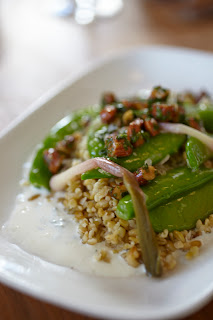 Piccino Cafe Green Farro salad photo by Julia Spiess
