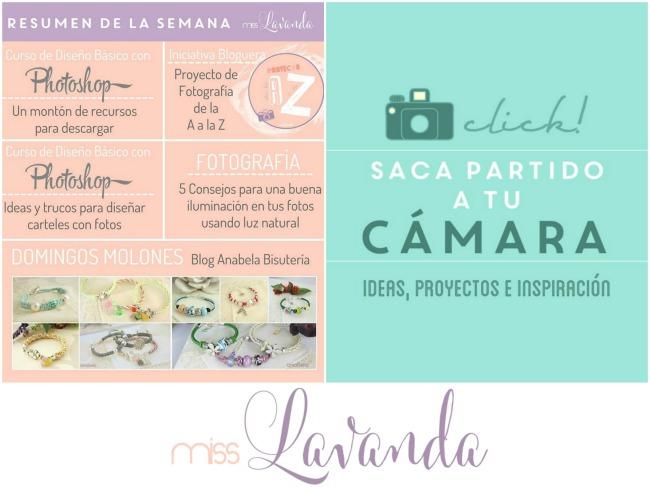 blog-miss-lavanda