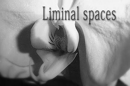 L I M I N A L - S P A C E S