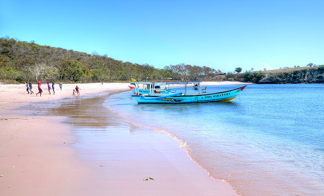 Pantai Merah Pulau Komodo