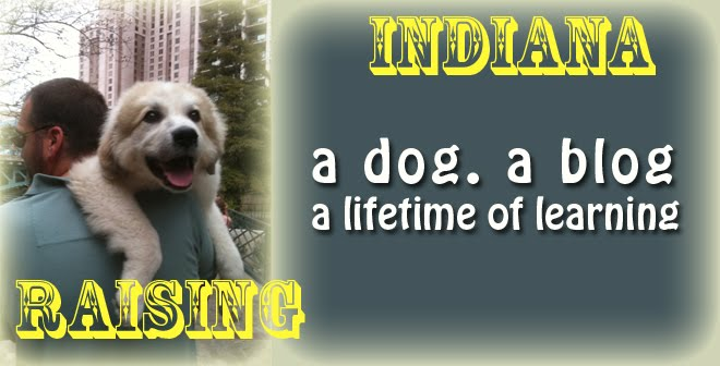 Raising Indiana