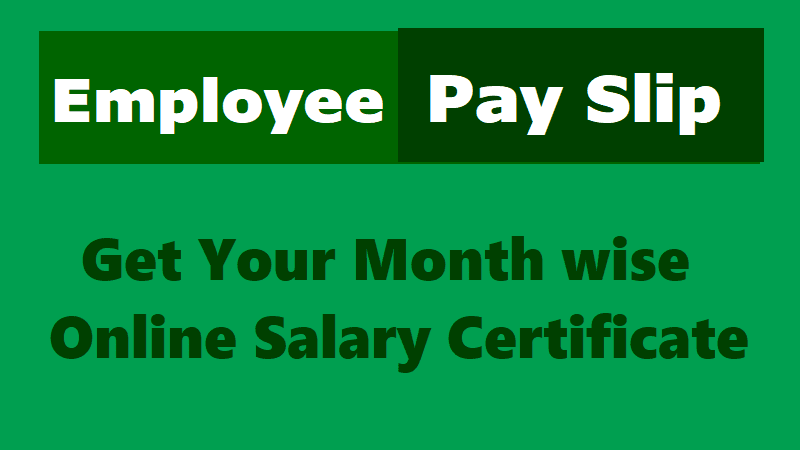 Online Employee Pay Slips,#salarycertificate,salary  Particulars,telangana/ts Employees Salary  Employees Salary Slip