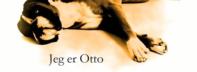 Jeg er Otto