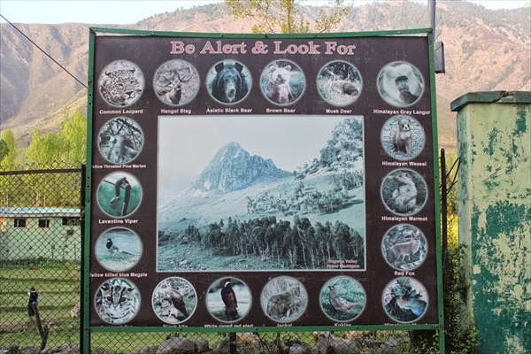 Dachigam National Park  Jammu  Kashmir  Trip My India