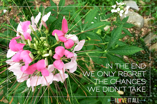 #motivational #quotes #chances #life #change #success #flowers #quote #goodwords