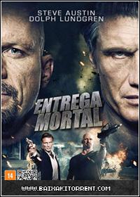 Baixar Filme Entrega Mortal Dublado - 2013 - RMVB DVDRip