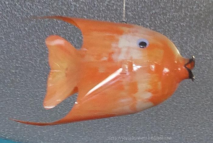 Joy 39 s jots shots whatnots bottle fish for Fish in a bottle menu