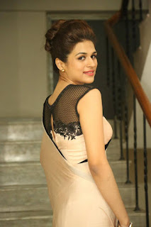 Actress Shraddha Das Latest Pictures in Saree at tur Talkies Trailer Launch  252813