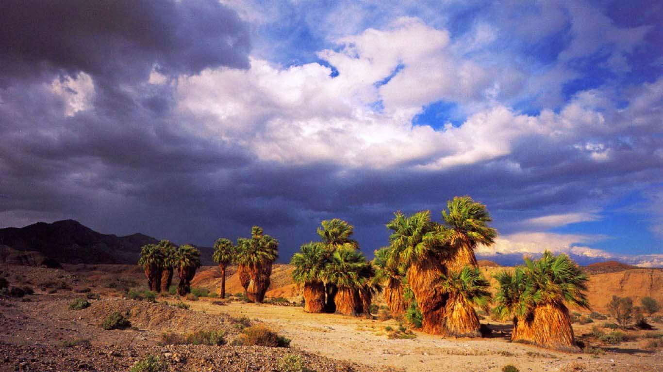 california-seventeen-palm-desert