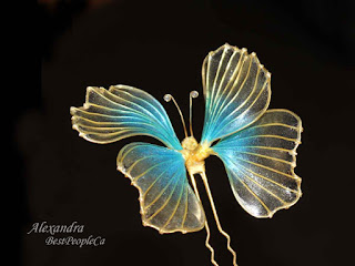 hair pin butterfly