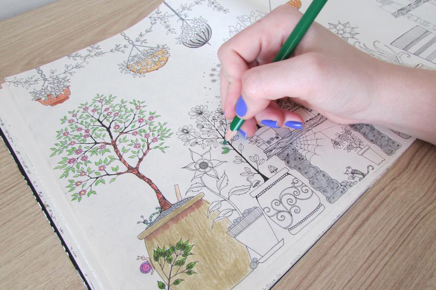 Livros Colorir Para Adultos Jardim Secreto Floresta Encantada Onde Comprar
