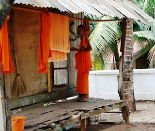 saffron monks, robes, monastery
