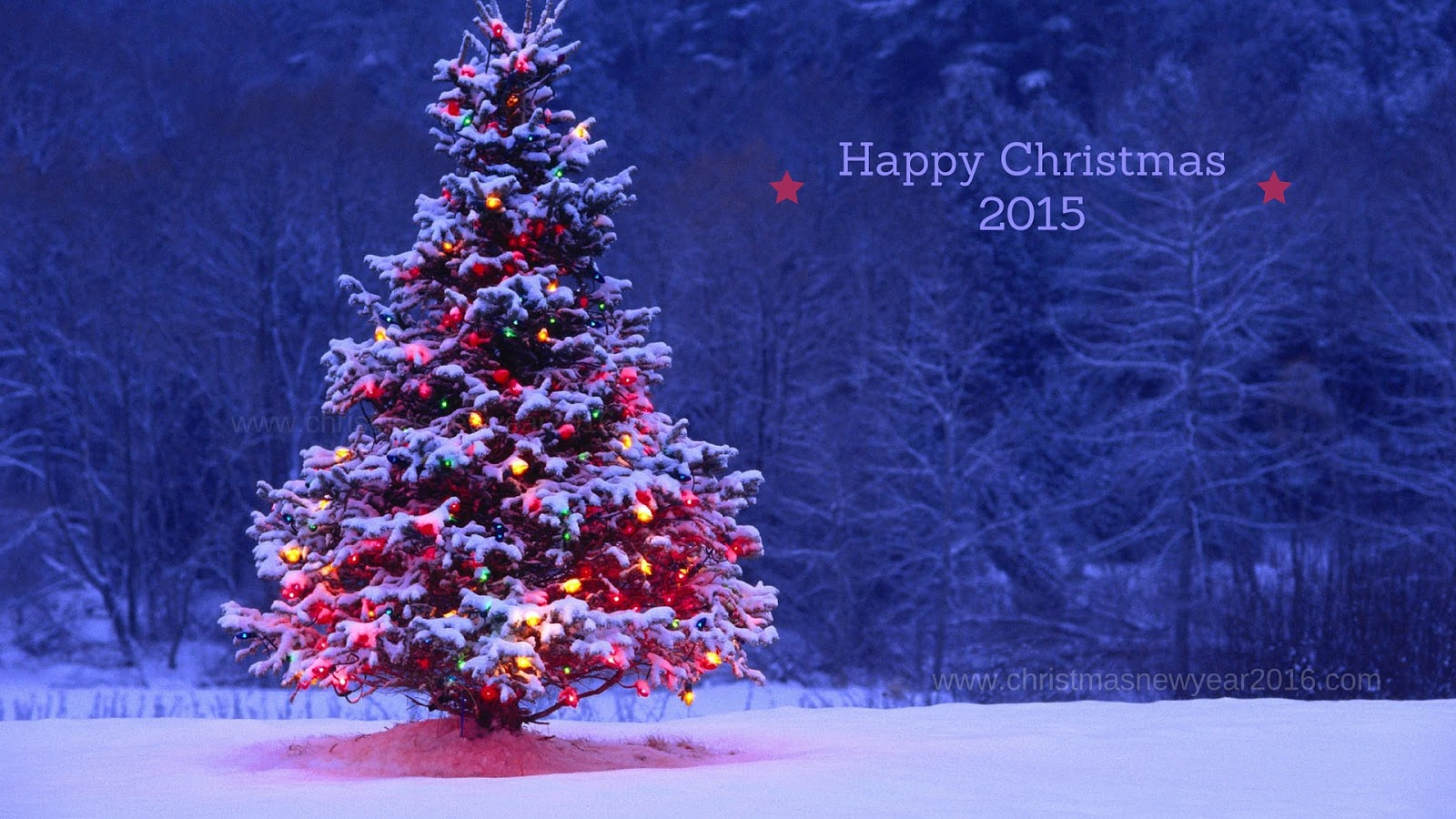 decorated christmas tree desktop hd wallpapers