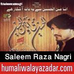 http://www.nohaypk.com/2015/10/saleem-raza-nagri-nohay-2016.html