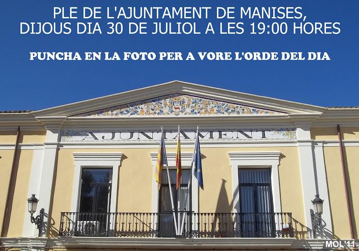 30.07.15 PLE DE JULIOL EN L'AJUNTAMENT DE MANISES
