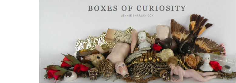Boxes of Curiosity