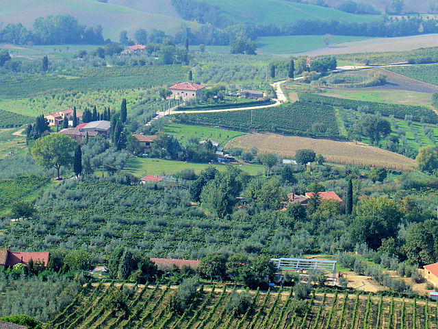 The sublime Tuscan countryside as seen from Montepulciano with fields of olive groves and vineyards.