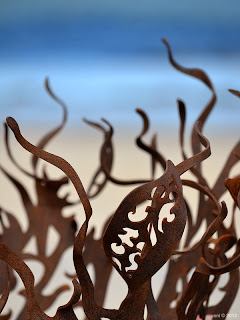 rusted shapes against the beach