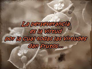 Frases De Motivación: La Perseverancia Es La Virtud Por La Cual Todas Las Virtudes Dan Frutos