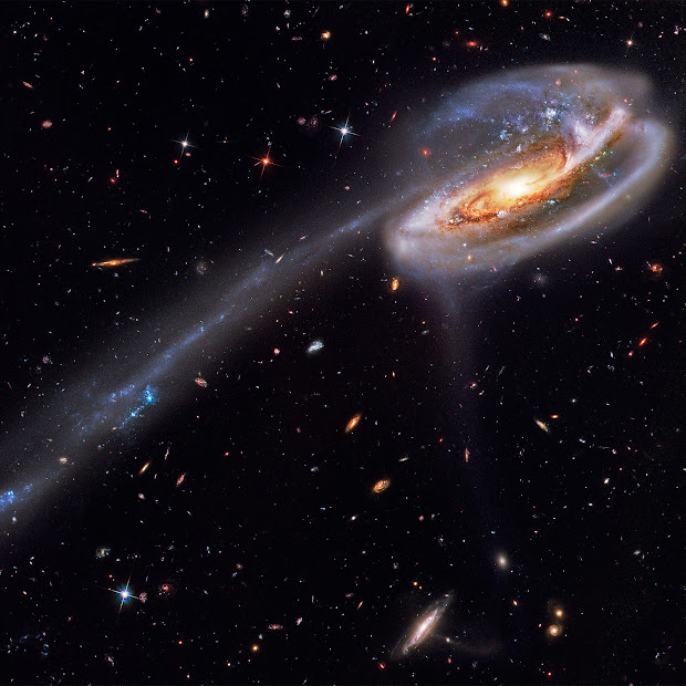 Arp 188 and the Tadpole's Tail