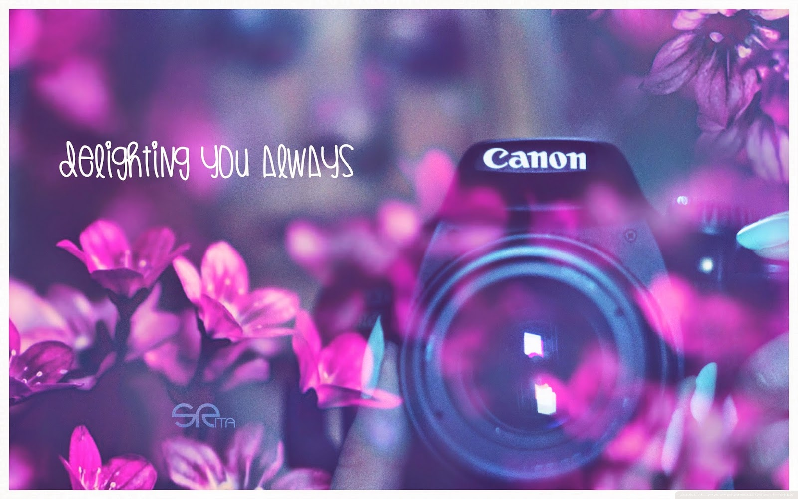 canon_delighting_you_always-wallpaper-2560x1600