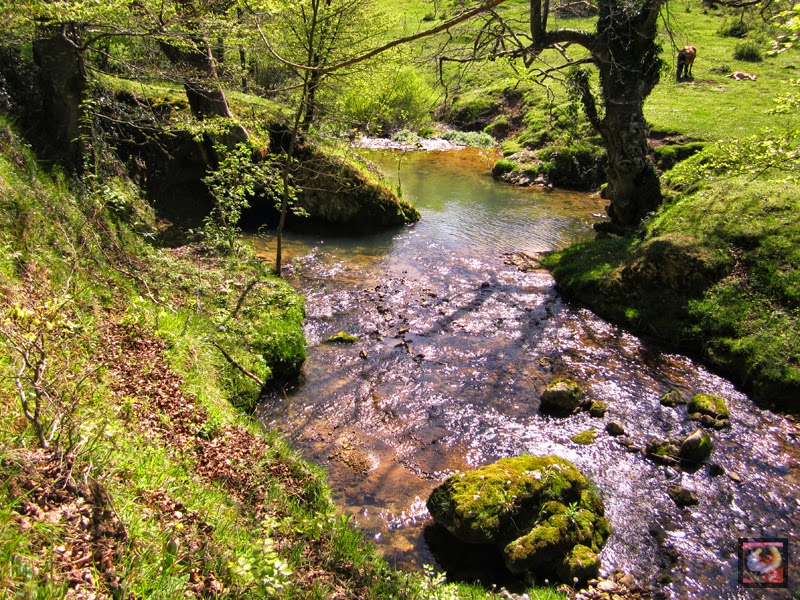 Desfiladero del río Ayuda de Okina (Araba) a Sáseta (Burgos)