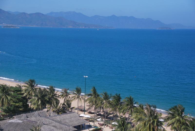 Trong xanh phố biển Nha Trang