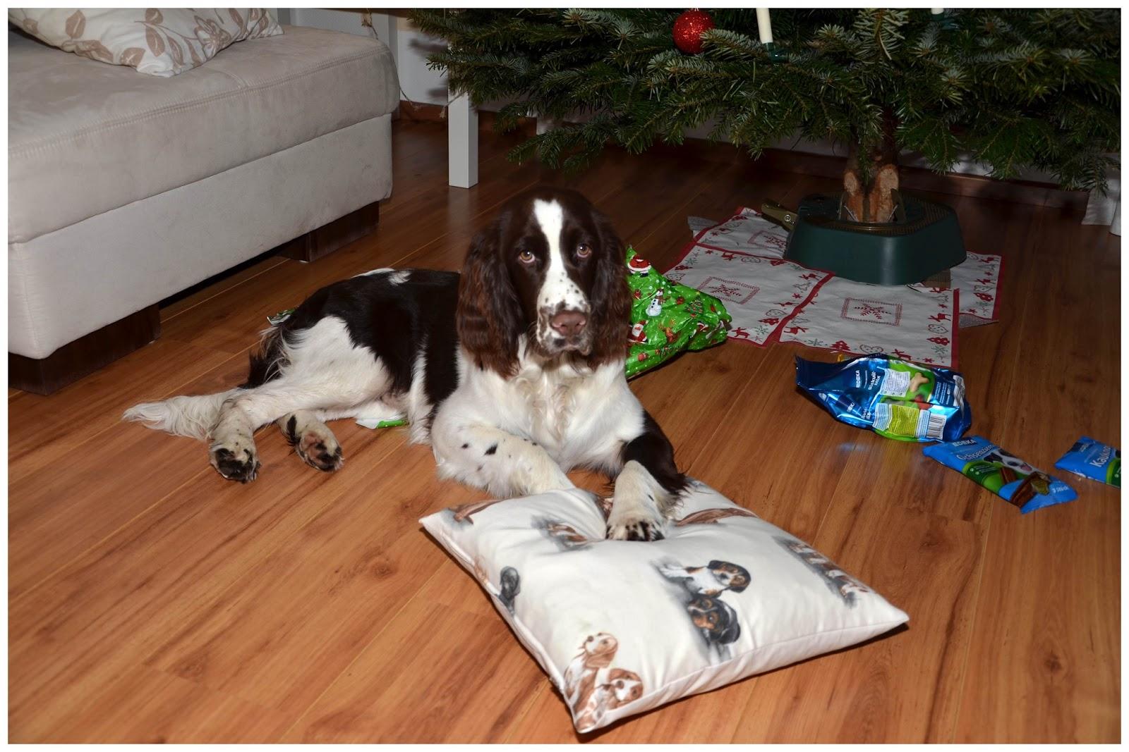 clooneys welt clooneys gedanken zu weihnachten. Black Bedroom Furniture Sets. Home Design Ideas