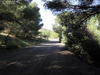 Camino hacia El Llano