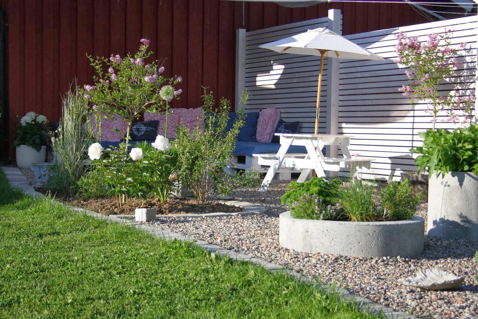 Vår köksträdgård