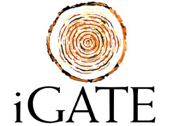 Fresher's jobs in iGATE  2013 Walk-ins For Fresher's as Trainee Associate From 12th Aug  2013 to 16th Aug 2013