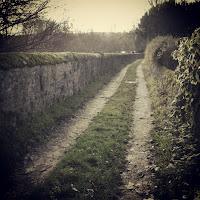 Country road, Azay-le-Rideau