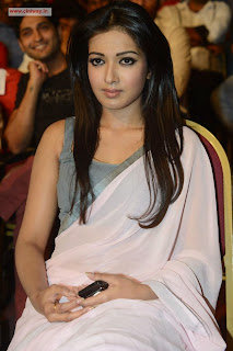 Catherine-Tresa-at-Paisa-Audio-Launch